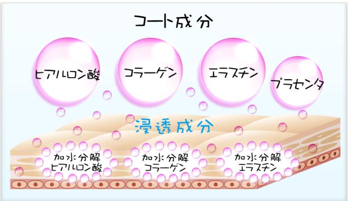 4つの美肌成分が、内側&外側をダブル保湿!