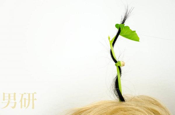 亜鉛,育毛,効果