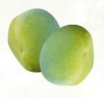 アフリカマンゴノキエキス