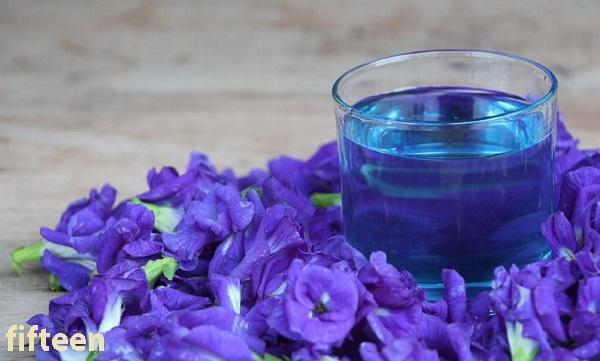 バタフライピー【青いお茶】の人気がヤバイ!効能・効果に味や飲み方を調べてみた!