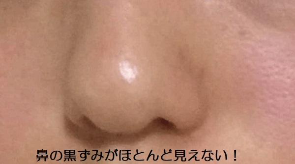 鼻の黒ずみが見えない!