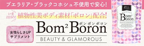 ボンボンボロン商品画像