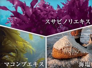 KAMIKA(カミカ)海の恵み成分